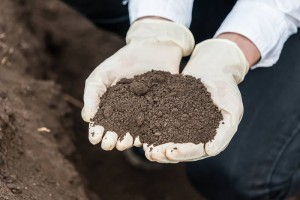 Woman holding soil